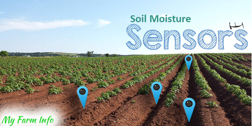 The Importance of Soil Moisture Sensors for farmers and how it can increase profitability